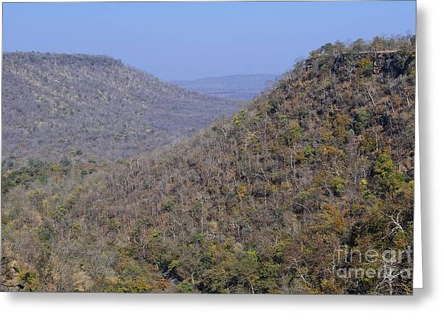 Landscape At Panna National Park In India Greeting Card by Robert Preston