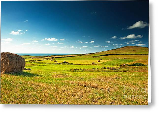 Landscape At Summer Greeting Card by Boon Mee