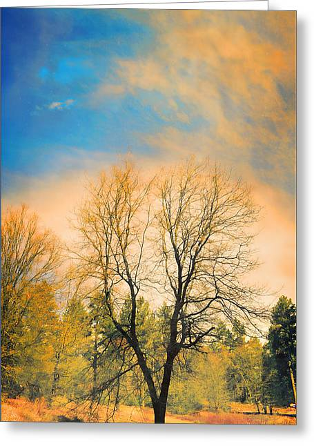 Landscape In Blue And Yellow  Greeting Card by Douglas MooreZart