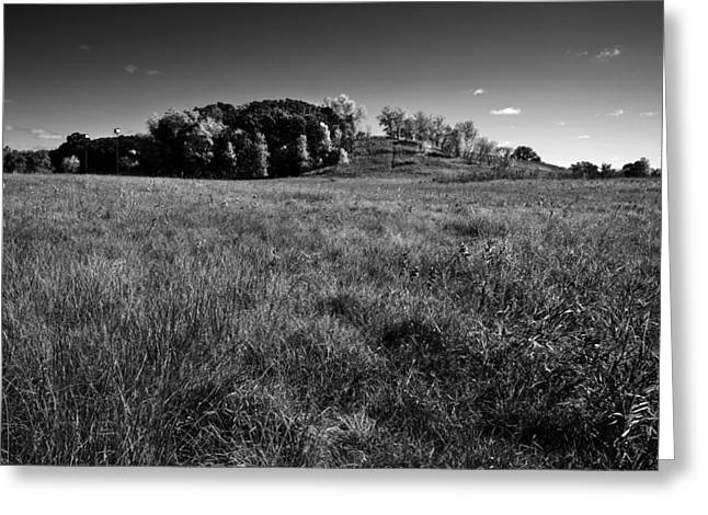 Landscape Meadow And Bird Houses Bw Greeting Card