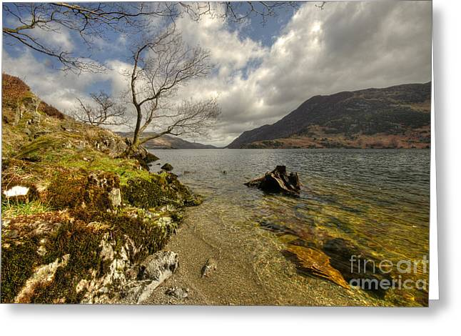 Landscape Of The Lake  Greeting Card by Rob Hawkins