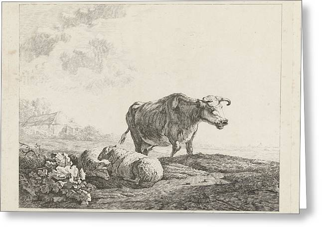 Landscape With A Cow And Two Sheep, Print Maker Christiaan Greeting Card