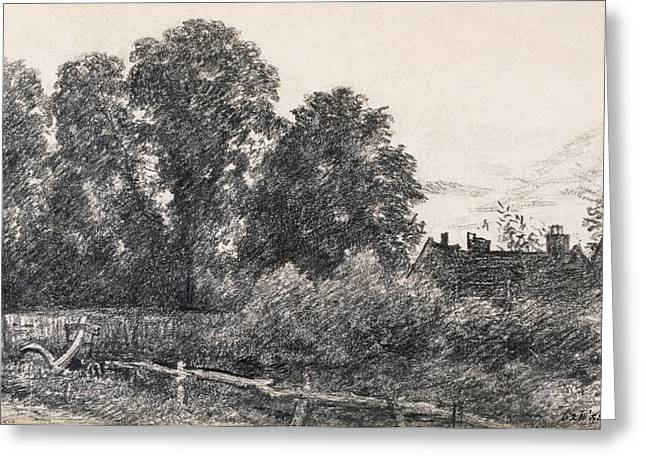 Landscape With Elm Tress And A House Greeting Card