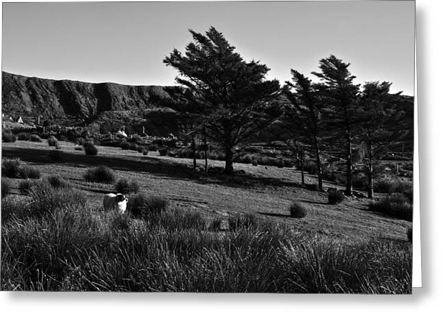 Landscapes Of Ireland Greeting Card