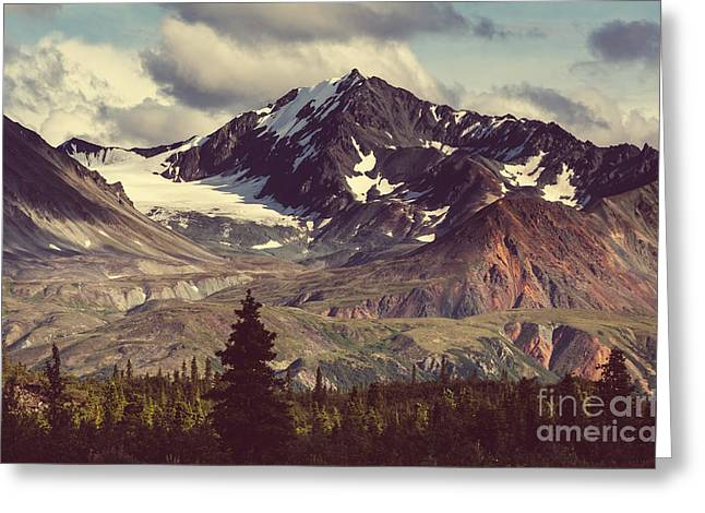 Landscapes On Denali Highway.alaska Greeting Card