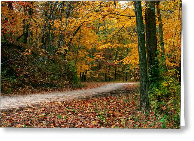 Lane In Fall Greeting Card