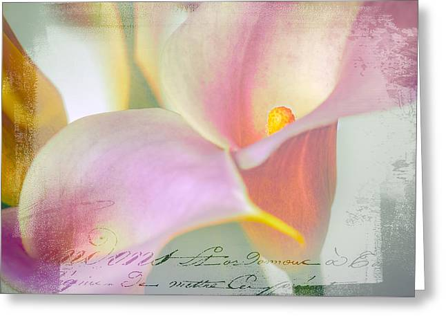 Language Of A Calla Lily Greeting Card by Julie Palencia