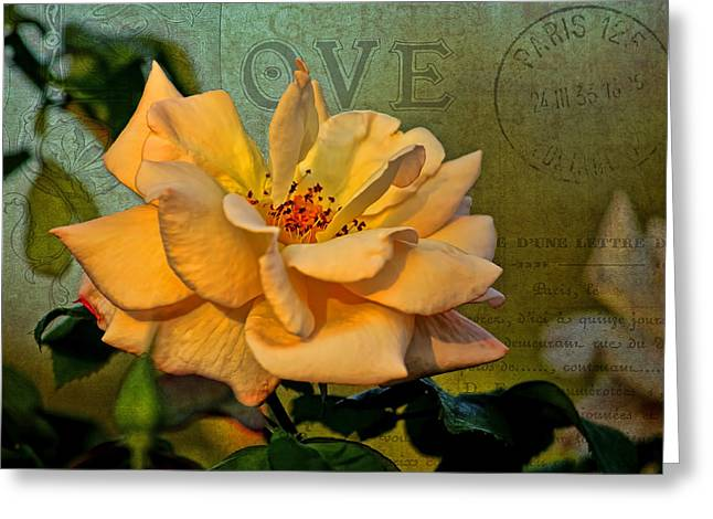 Language Of The Heart - Rose Greeting Card by HH Photography of Florida