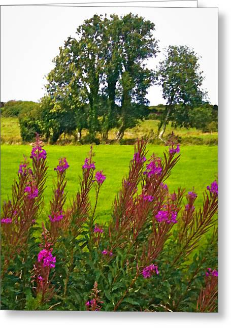 Lanna Fireweeds County Clare Ireland Greeting Card