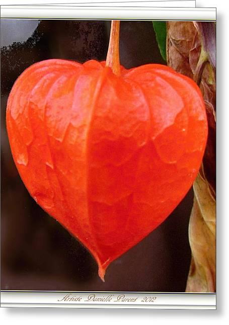 Lantern Flower Greeting Card