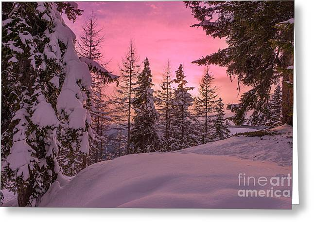 Lapland Sunset Greeting Card by IPics Photography