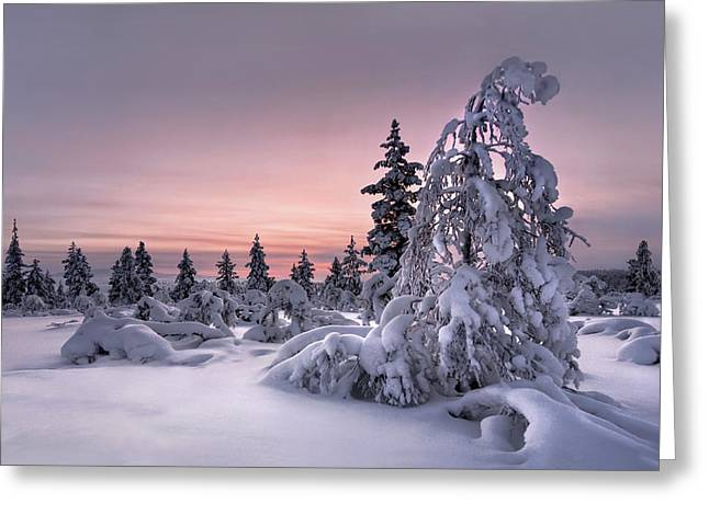 Lappland - Winterwonderland Greeting Card