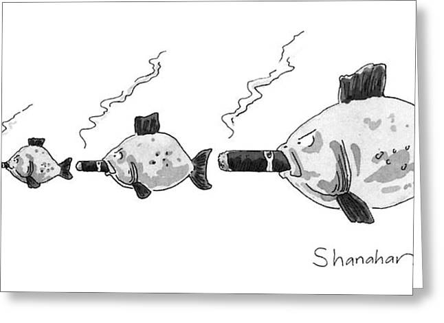 Large Fish Is Smoking A Fat Cigar. Smaller Fish Greeting Card by Danny Shanahan