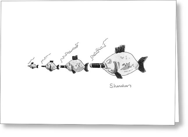 Large Fish Is Smoking A Fat Cigar. Smaller Fish Greeting Card by Danny Shanahan