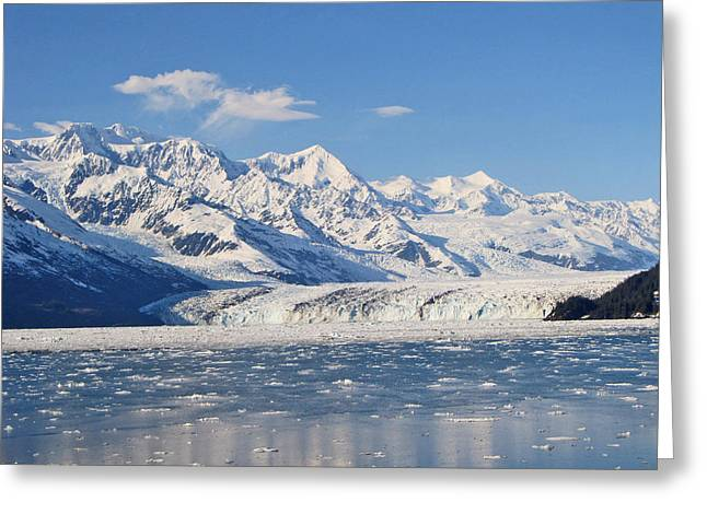 Large Glacier Greeting Card by Larry Marano