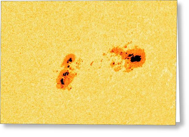Large Sunspot Group Greeting Card