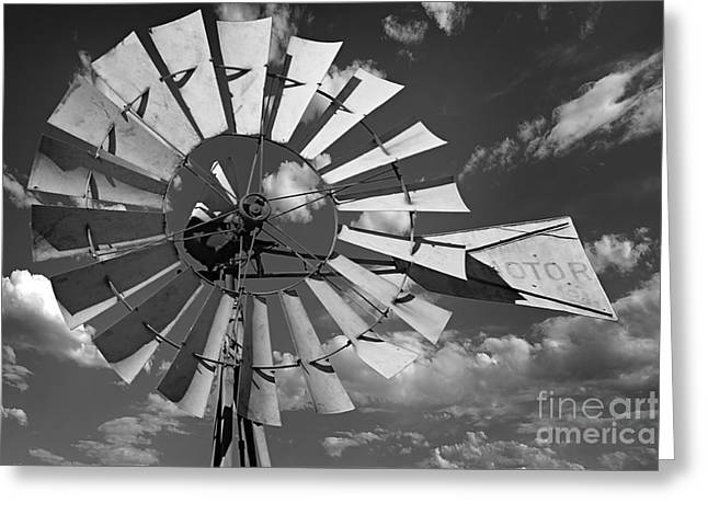 Large Windmill In Black And White Greeting Card