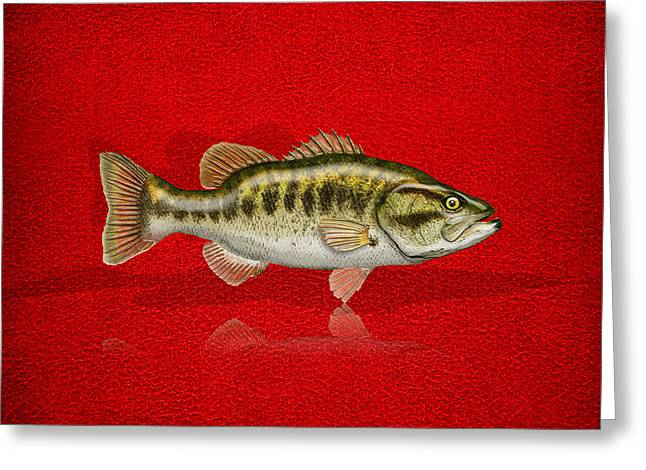 Largemouth Bass On Red Leather Greeting Card by Serge Averbukh