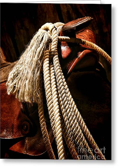 Lariat On A Saddle Greeting Card by Olivier Le Queinec