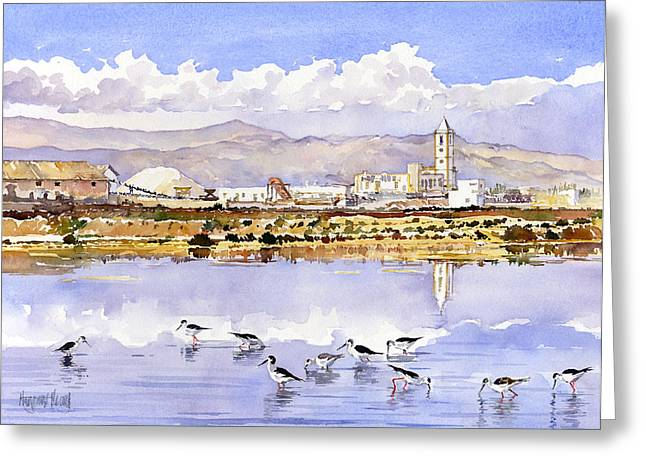 Las Salinas De Cabo De Gata Greeting Card by Margaret Merry