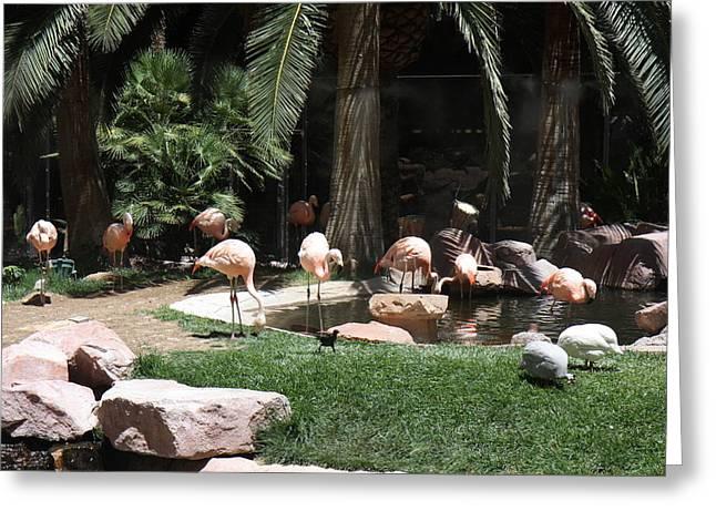 Las Vegas - Flamingo Casino - 12129 Greeting Card by DC Photographer