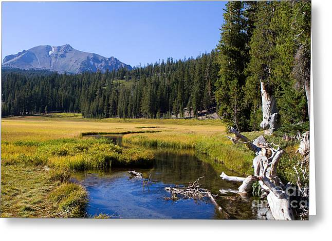 Lassen Mountain Stream Greeting Card