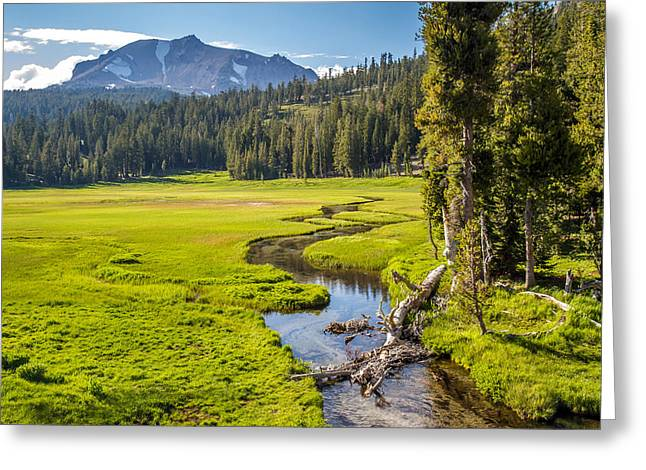 Lassen Volcanic Meadow Greeting Card by Pierre Leclerc Photography