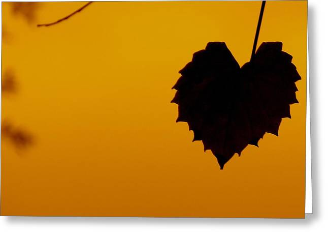 Last Leaf Silhouette Greeting Card