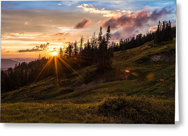 Last Light At Cedar Greeting Card by Chad Dutson