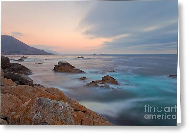 Greeting Card featuring the photograph Last Light by Jonathan Nguyen
