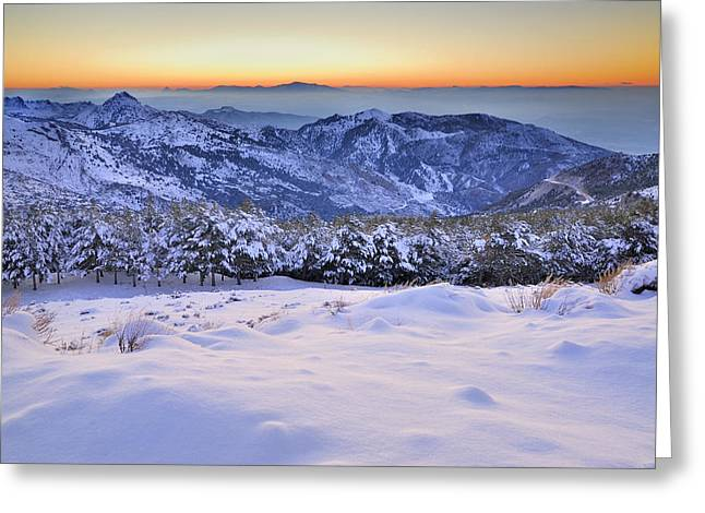 Last Light Of The Day Greeting Card by Guido Montanes Castillo