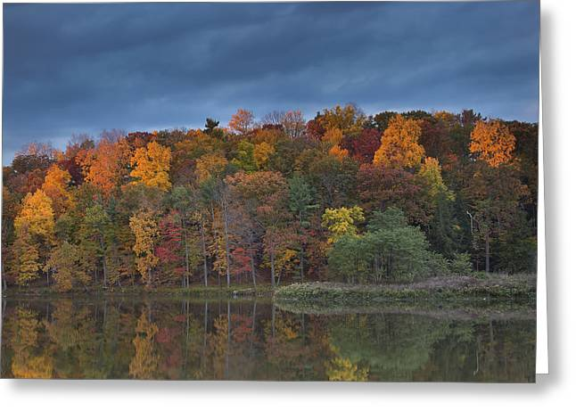 Last Light On Beebe Lake Greeting Card by Michele Steffey