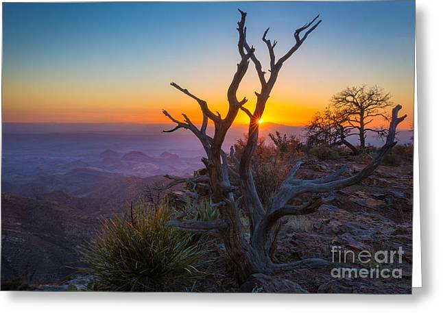 Last Light On The South Rim Greeting Card by Inge Johnsson