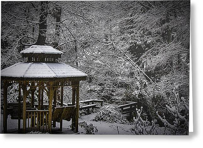 Last Snow Greeting Card by Barry Jones