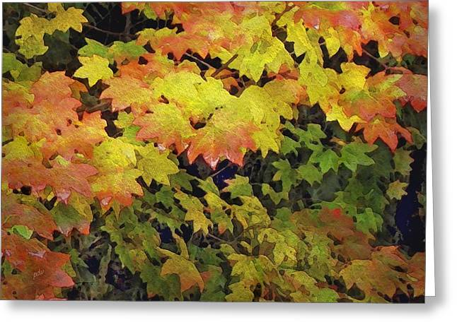 Last Year's Autumn Leaves Greeting Card by Philip White
