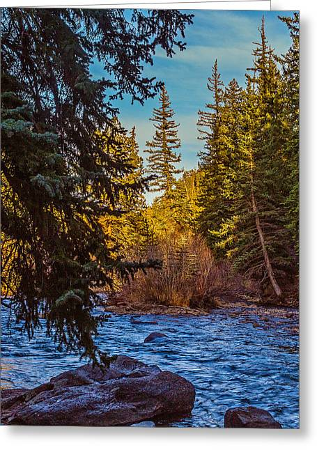 Late Afternoon Along The South Platte Greeting Card by Mike Schaffner