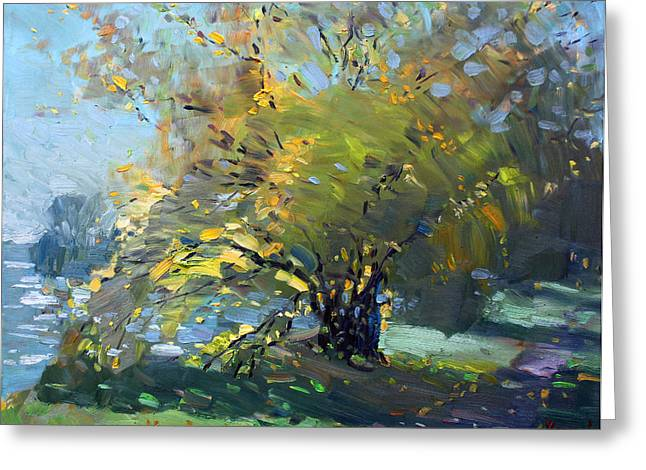 Late Afternoon By The River Greeting Card