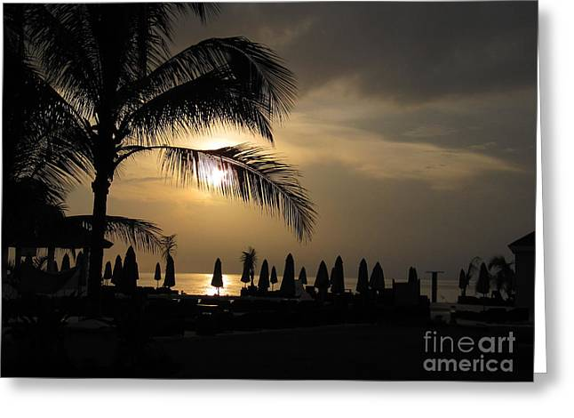 Late Afternoon In Mobay Greeting Card by Addie Hocynec