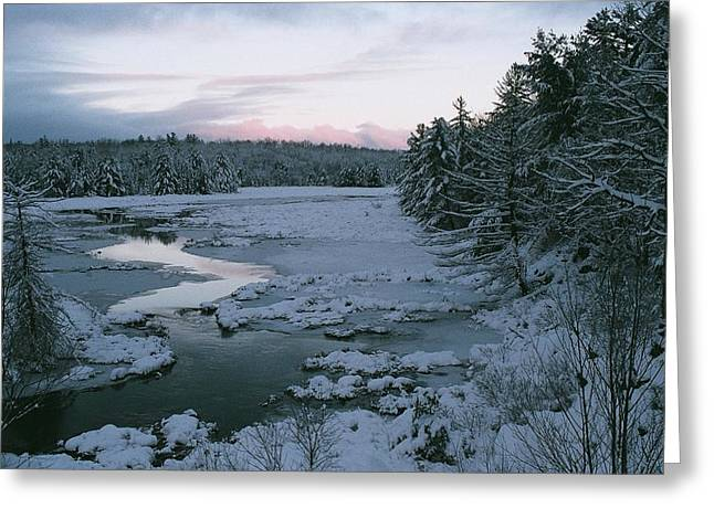 Greeting Card featuring the photograph Late Afternoon In Winter by David Porteus
