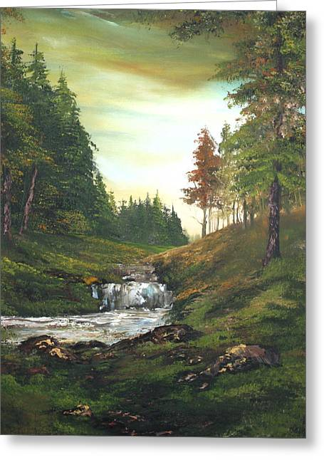 Late Afternoon On Cannock Chase Greeting Card by Jean Walker