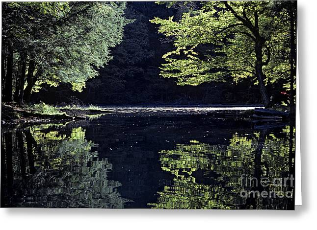 Late Afternoon Reflection Greeting Card by Kevin McCarthy