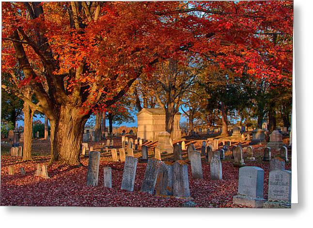 Late Afternoon Sun  Greeting Card by Jeff Folger
