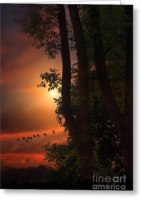 Late August Sunset Greeting Card by Tom York Images