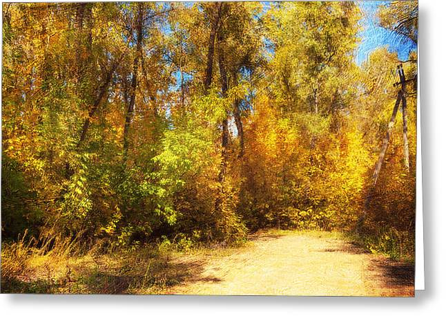 Late Autumn Colours Greeting Card by Svetlana Sewell