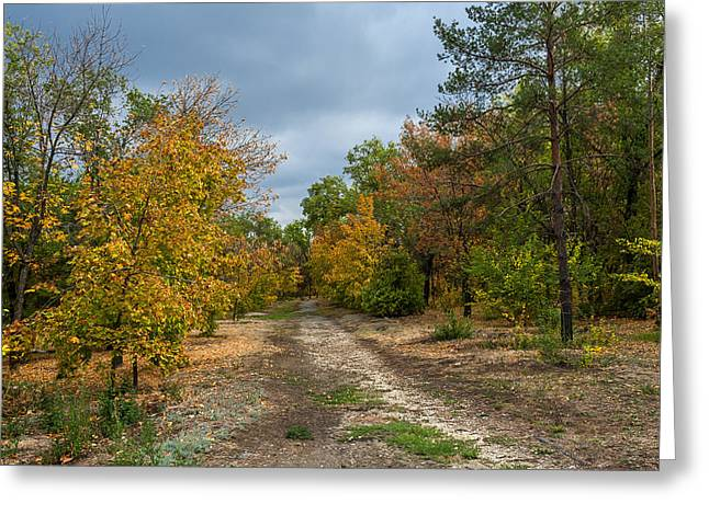 Late Autumn Greeting Card by Svetlana Sewell