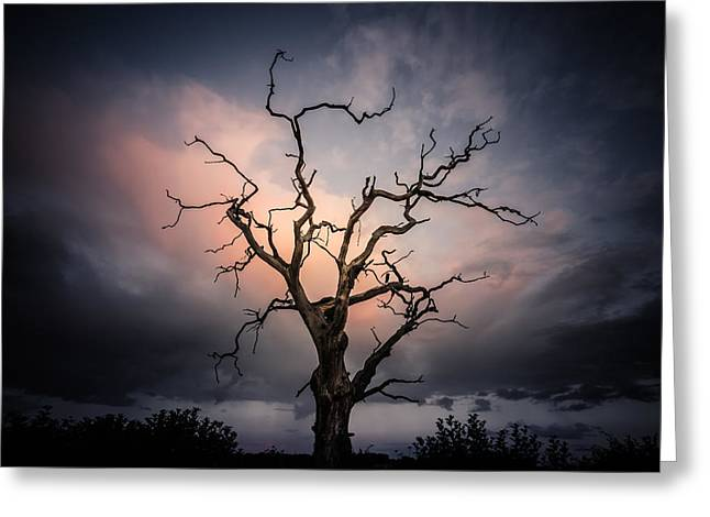 Late Evening Cloud Display Greeting Card by Chris Fletcher