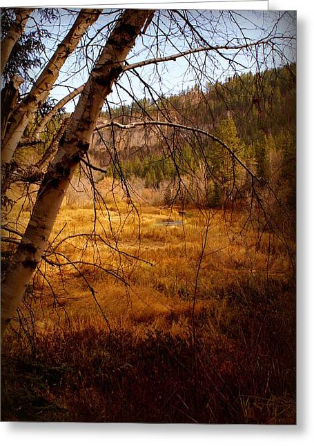 Late Fall Greeting Card
