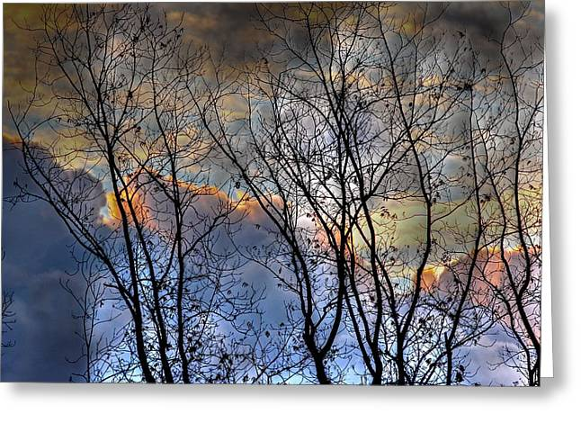 Late Fall Sunrise Greeting Card