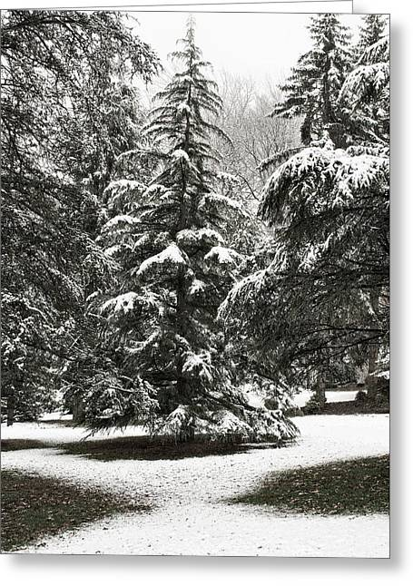Greeting Card featuring the photograph Late Season Snow At The Park by Gary Slawsky
