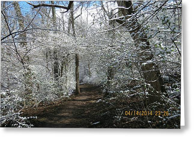 Late Season Snow Fall Greeting Card by Eric Switzer